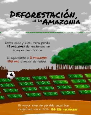 Deforestación de la Amazonía: Casi 2 millones de hectáreas de bosques perdidos.Infografía SPDA