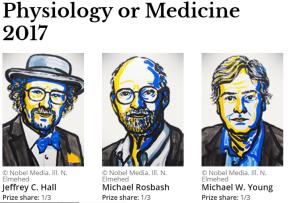 Premio Nobel de Medicina 2017 por Descubrimiento de Mecanismos moleculares que controlan el ritmocircadiano