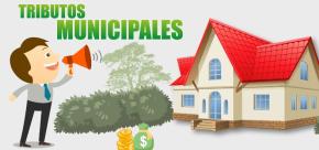 Veinte municipios de Lima aprueban ordenanzas para facilitar o condonar deuda amorosos