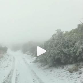 Hawai, increíble escenario de nevadas. Enfrenta aún más fuertes que la primera en el2016