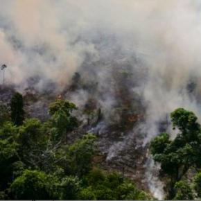 Sobre incendios forestales en Amazonia brasileña, ¿Mentalidad colonialista?, por ElizabethSalmón/Idehpucp