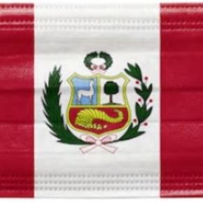 La pandemia COVID 19 en Perú sin un verdadero sistema de saludintegrado