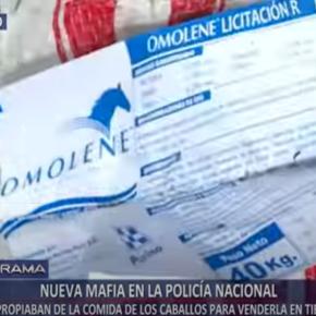 A la espera de una investigación oficial a fondo de la Policía Nacional del Perú por mafia interna que roba cientos de kilos de alimentos paracaballos