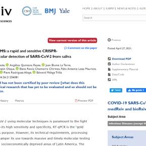 COVID-19: Concluye exitosamente proyecto de prueba molecular rápida financiado por el Concytec y otras instituciones peruanas y extranjeras, listo para solicitar a Digemid su fabricación yuso