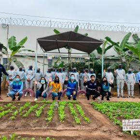 Con instalación de jardín educativo MML promueve la reinserción social en centro juvenil de Diagnóstico y RehabilitaciónMaranguita